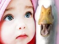 Çocuğunuz sudan çıkmış balık gibi mi olsun? | Annelik yazıları; Anne, Çocuk