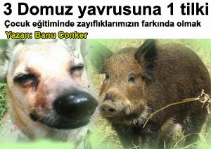 Çocuk eğitimi farkındalık ve zaaflarımızı bilmek - Anne çocuk yazıları 3 domuz yavrusuna 1 tilki